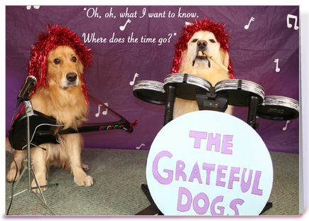 Grateful Dogs Birthday greeting card by GoldDogMagic Card Gnome
