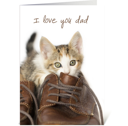 Kitten Love You Dad